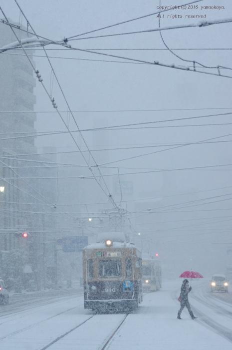 雪に包まれた日に_d0309612_22525336.jpg