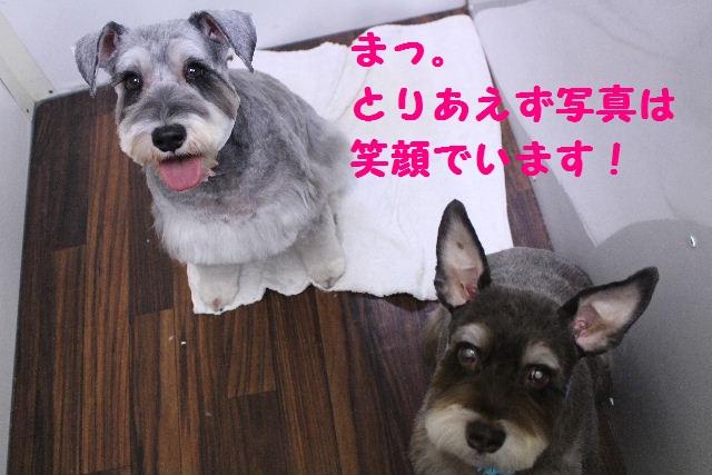 断シャリ!!_b0130018_9364895.jpg