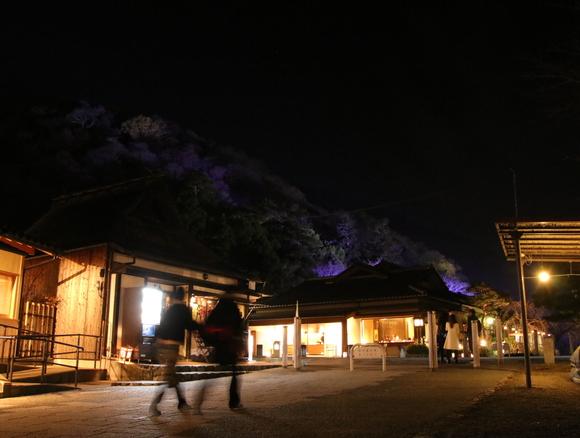 2016年 京都 花灯路_d0202264_17113697.jpg