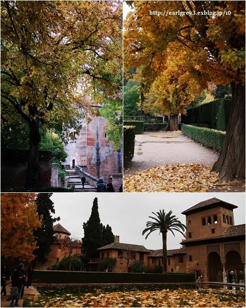 スペイン旅 2016  ヘネラリーフェ庭園_d0353281_00040020.jpg