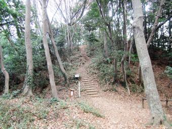稲田堤の家の北側は自然遊歩道_c0195909_1022043.jpg