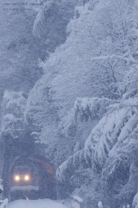 雪の朝に_d0309612_22001624.jpg