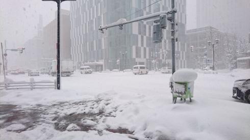 29年ぶりの大雪大騒動_a0359239_07155752.jpg