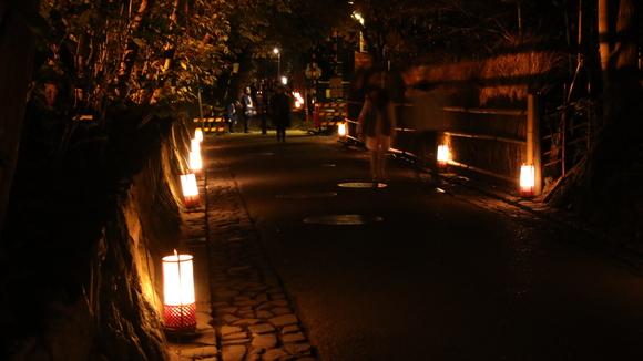 2016年 京都 花灯路_d0202264_4281631.jpg