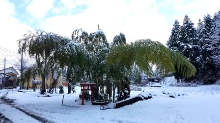 雪_a0128408_10361811.jpg