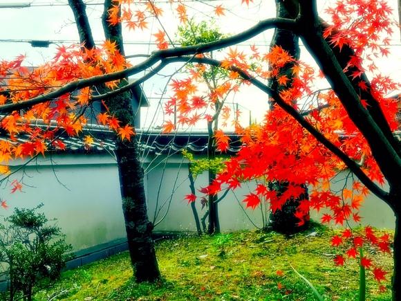 京都、HA様のSprint_d0182937_21162036.jpg