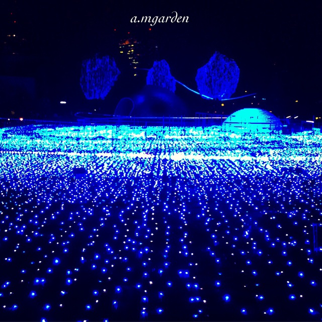 東京・横浜クリスマス一色。_b0125443_10151164.jpg