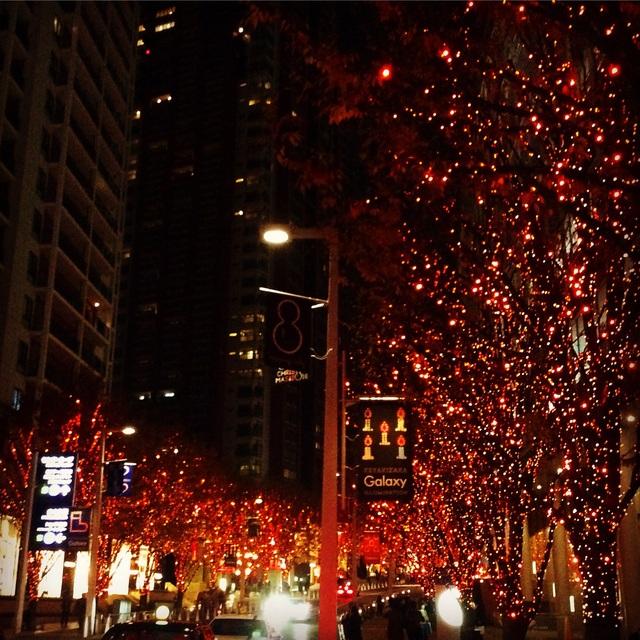 東京・横浜クリスマス一色。_b0125443_10215088.jpg