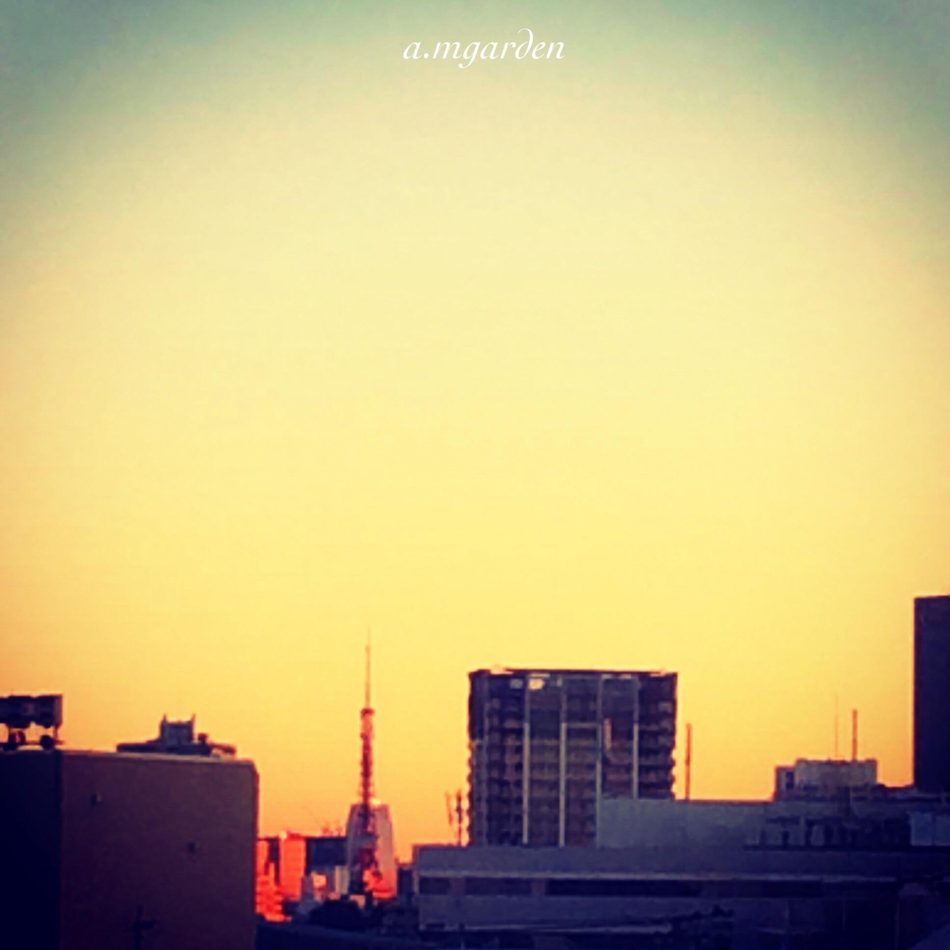 東京・横浜クリスマス一色。_b0125443_1093824.jpg