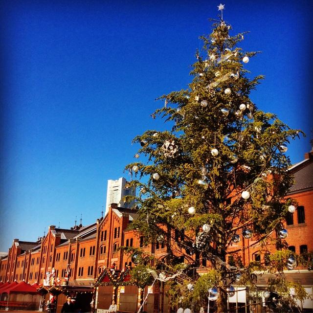 東京・横浜クリスマス一色。_b0125443_948217.jpg