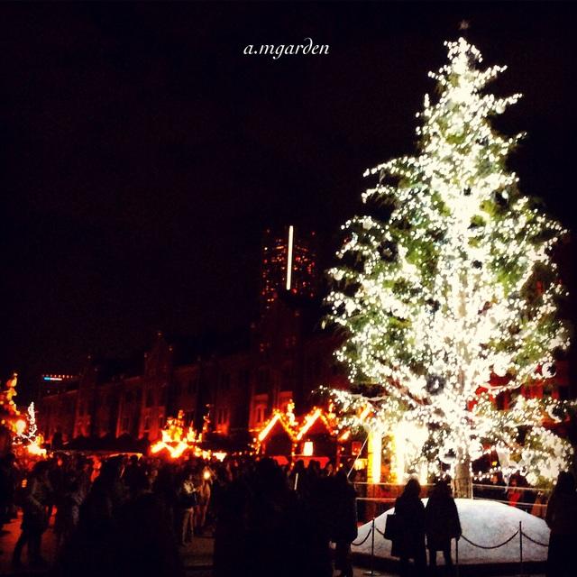 東京・横浜クリスマス一色。_b0125443_953247.jpg