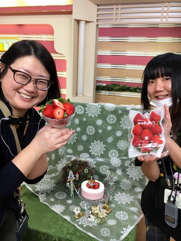 はっけんテレビで苺アイス クリスマスケーキをご紹介しました。_d0210450_17161332.jpg