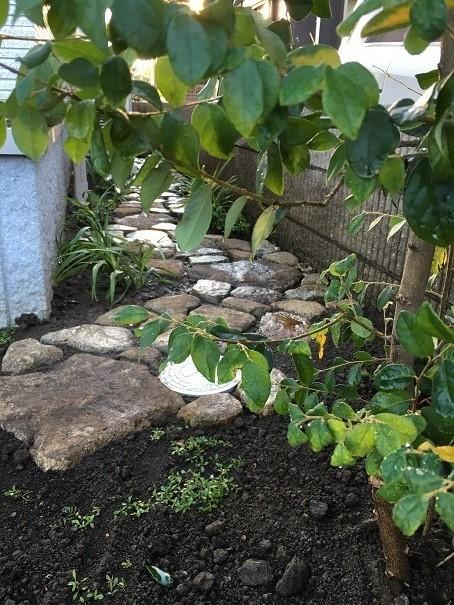 坪庭と、路地庭と。_e0356655_18320441.jpg