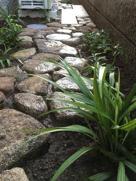 坪庭と、路地庭と。_e0356655_18321593.jpg