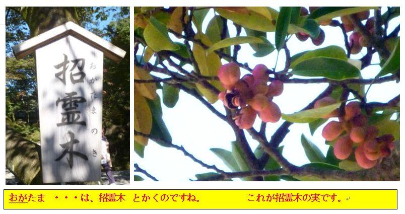 c0111581_119307.jpg