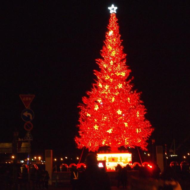 函館クリスマスファンタジー_a0292194_15591746.jpg