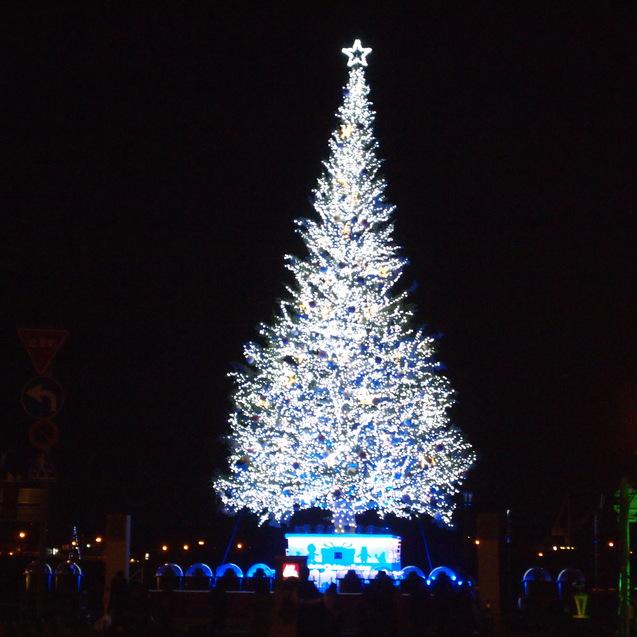 函館クリスマスファンタジー_a0292194_1682080.jpg
