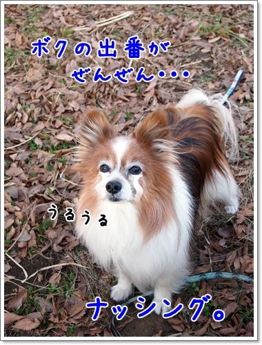 d0013149_00262070.jpg