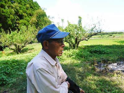 菊池水源里山ニンジン 平成28年度の無農薬・無化学肥料栽培のニンジンの発送をスタートします!_a0254656_18575927.jpg