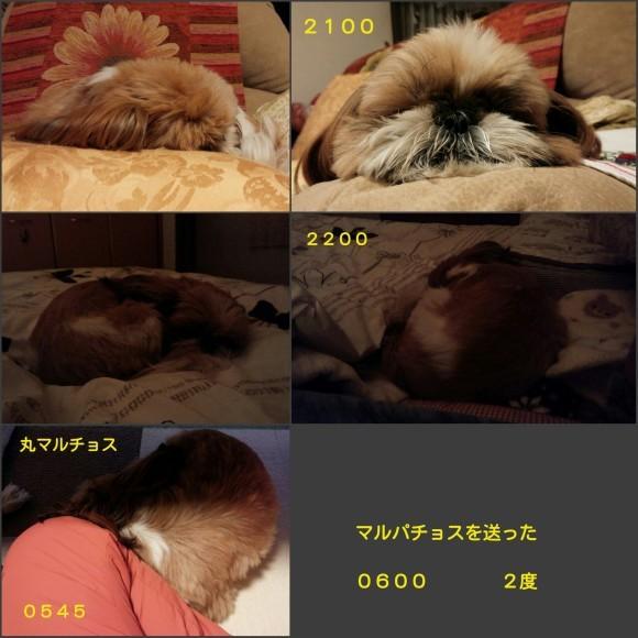 b0306158_13503437.jpg