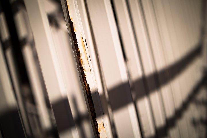 ペデストリアンデッキの赤錆と戯れる光蜥蜴_d0353489_21123636.jpg