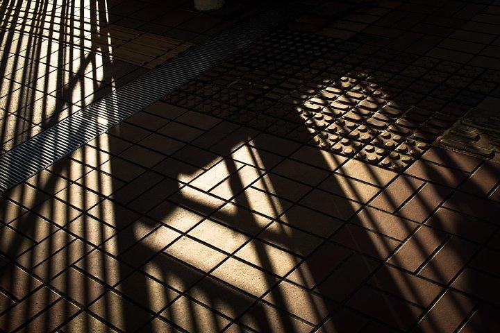 ペデストリアンデッキの赤錆と戯れる光蜥蜴_d0353489_21184079.jpg