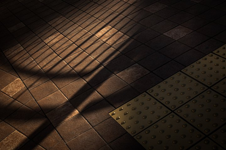 ペデストリアンデッキの赤錆と戯れる光蜥蜴_d0353489_2133257.jpg