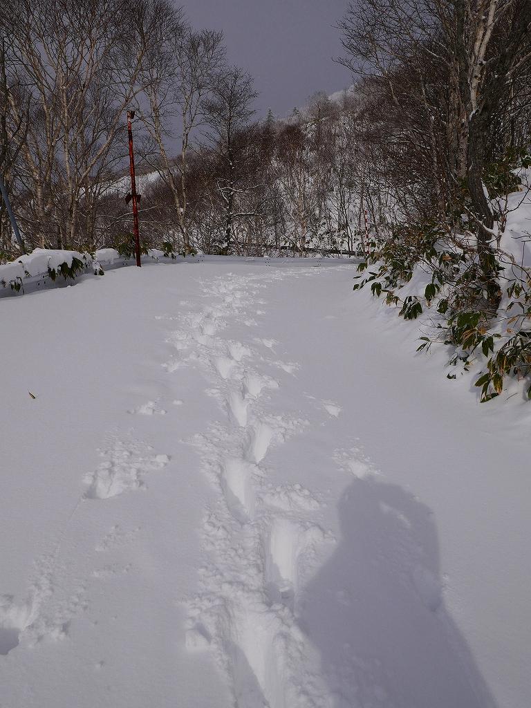紋別岳、12月16日-その1-_f0138096_16454822.jpg