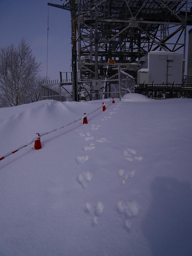 紋別岳、12月16日-その1-_f0138096_1646726.jpg