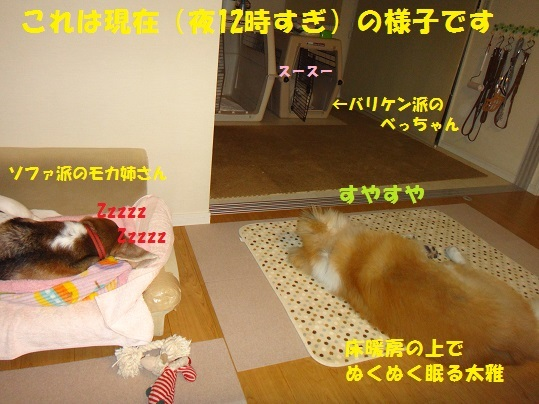f0121712_00473838.jpg