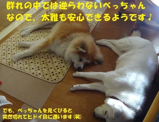 f0121712_01140173.jpg