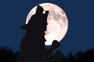 満月デトックス_f0015517_23263349.jpeg