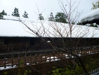 今日の清水園_e0135219_13385045.jpg