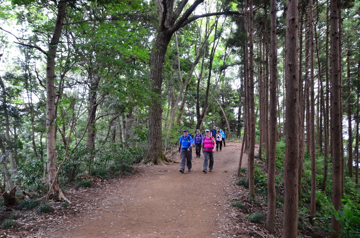 Shinetsu Trail Tour 2016 Oct 13 to Oct 23 [Part 1]_d0112928_3482013.jpg