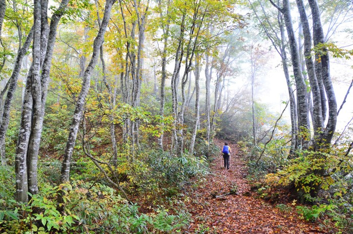 Shinetsu Trail Tour 2016 Oct 13 to Oct 23 [Part 3]_d0112928_7131763.jpg