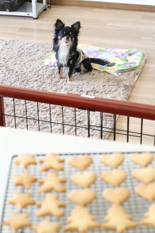 【レッスンレポ】アイシングクッキー基礎レッスン②_b0345432_09531487.jpg