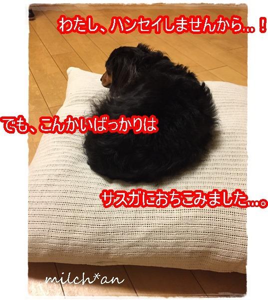 b0115642_18145962.jpg