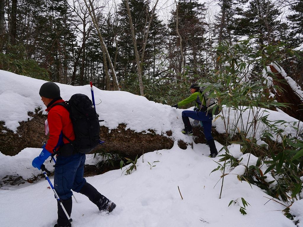 風不死岳北尾根、12月14日_f0138096_11553332.jpg