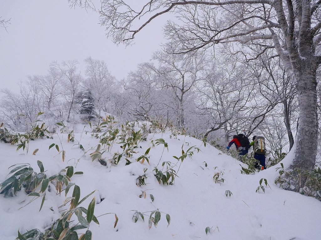 風不死岳北尾根、12月14日_f0138096_11554957.jpg