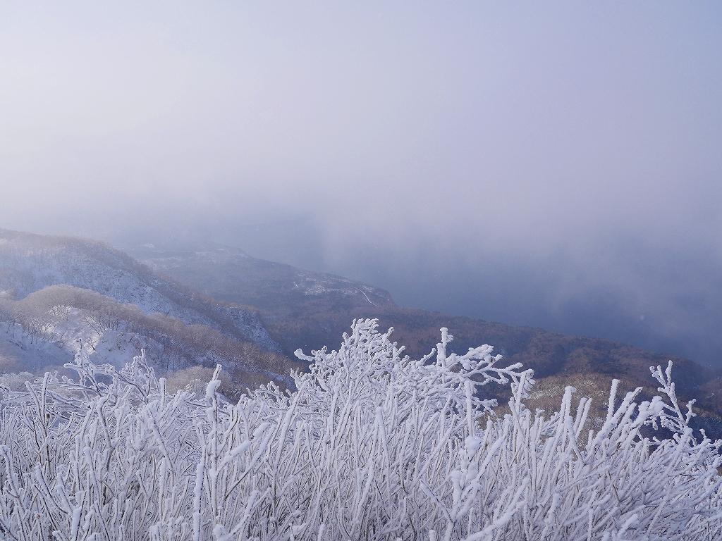 風不死岳北尾根、12月14日_f0138096_11562895.jpg