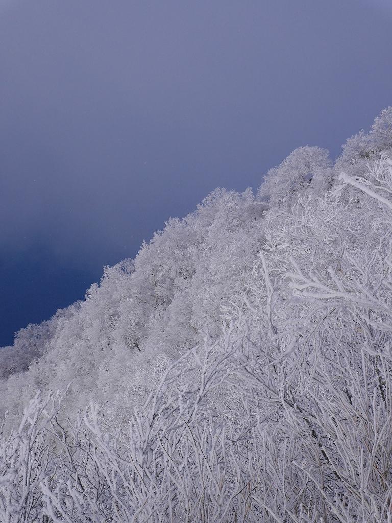 風不死岳北尾根、12月14日_f0138096_11563572.jpg