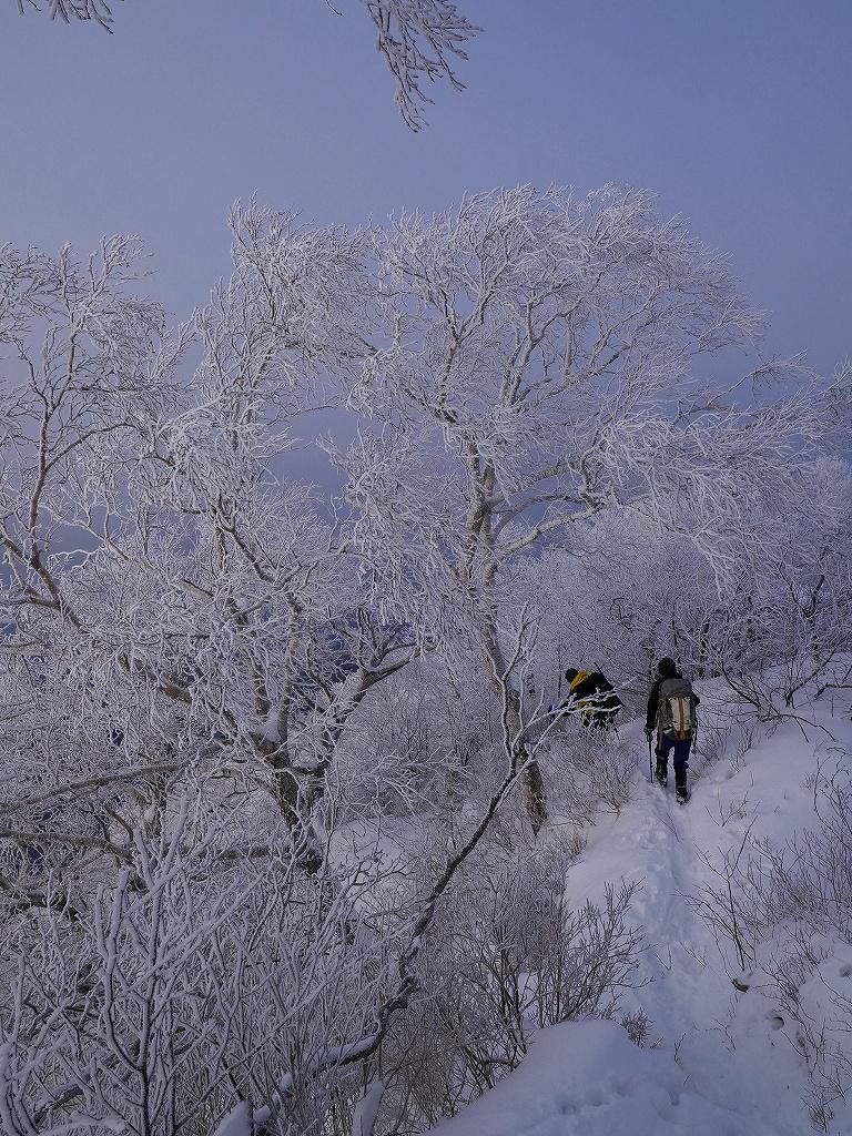 風不死岳北尾根、12月14日_f0138096_11565474.jpg