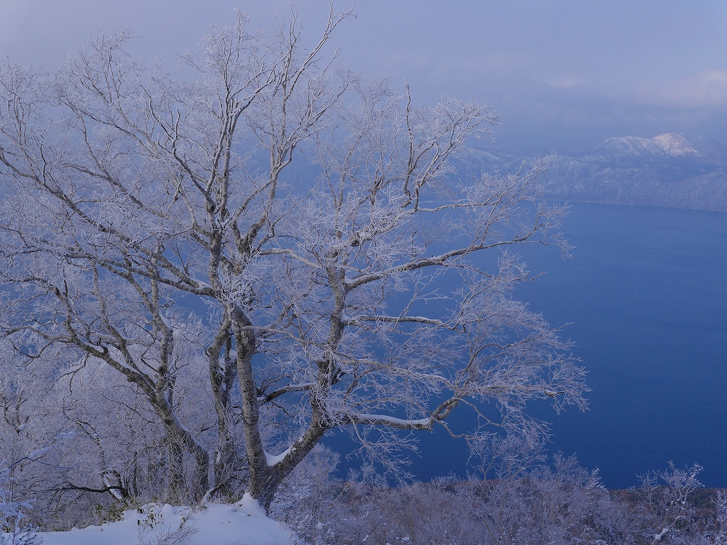風不死岳北尾根、12月14日_f0138096_11571139.jpg