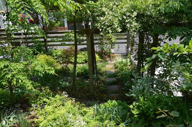再び春画像…4月30日-5月1日の庭。_c0124100_19593849.jpg