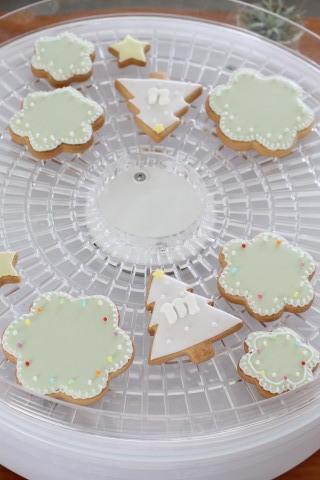 【レッスンレポ】launaのもらって嬉しい食べて美味しいアイシングクッキーレッスン_b0345432_21135287.jpg