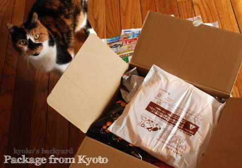 お正月(と猫)がテーマの京都便♪_b0253205_05234463.jpg