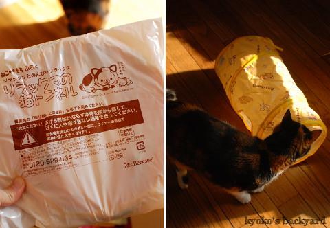 お正月(と猫)がテーマの京都便♪_b0253205_05240150.jpg