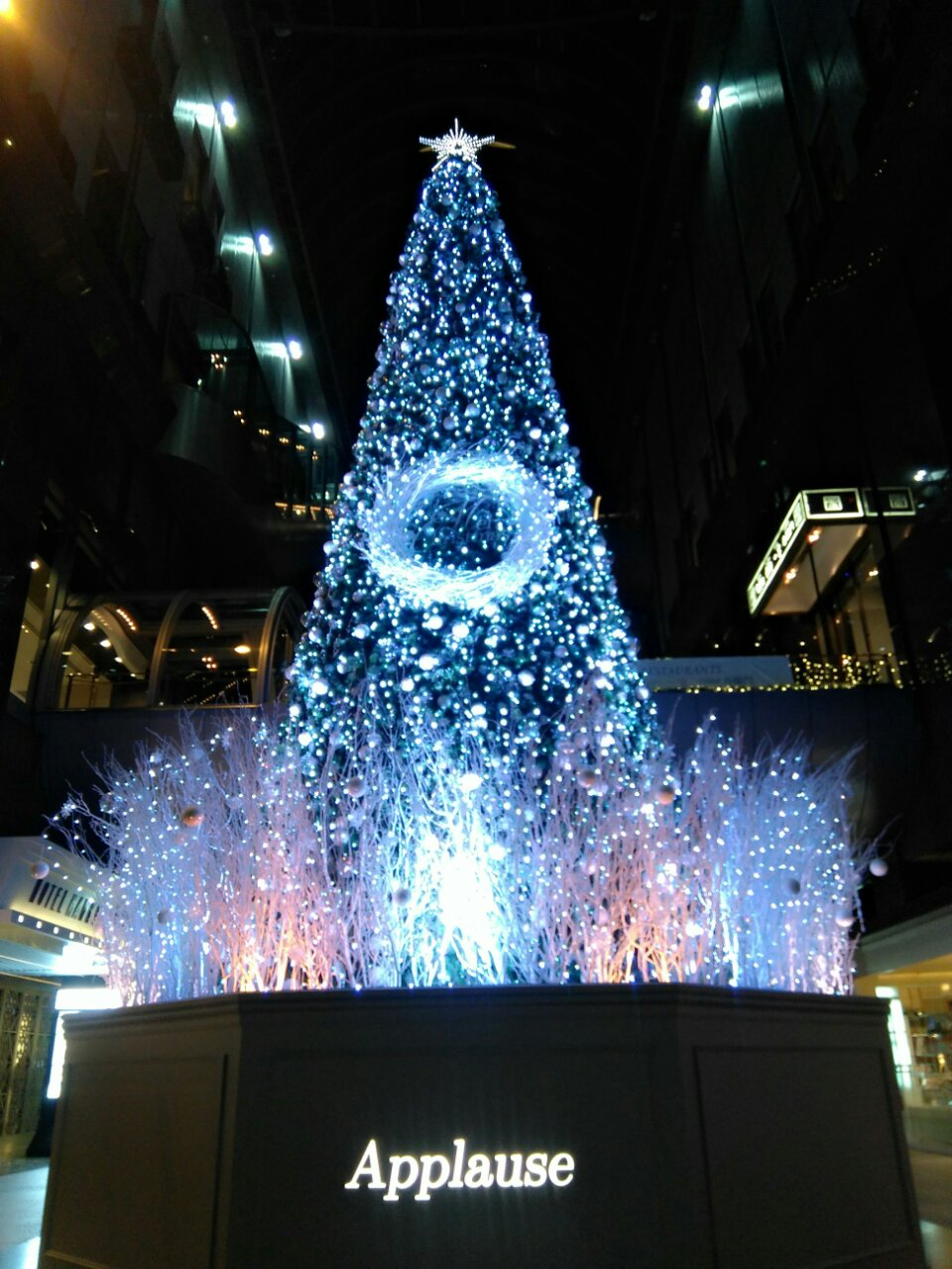 Merry Christmas!_e0069308_23572829.jpg