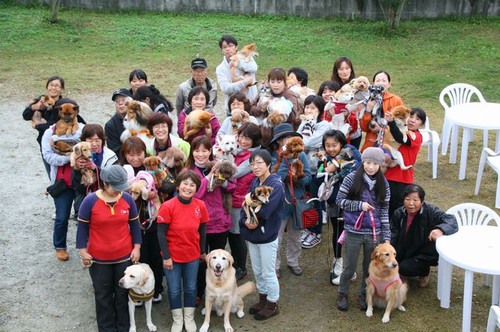 創立10周年記念ドッグラン大会_e0364854_17170434.jpg