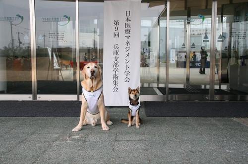 日本医療マネジメント学会_e0364854_17181030.jpg